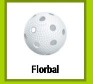 Florbal