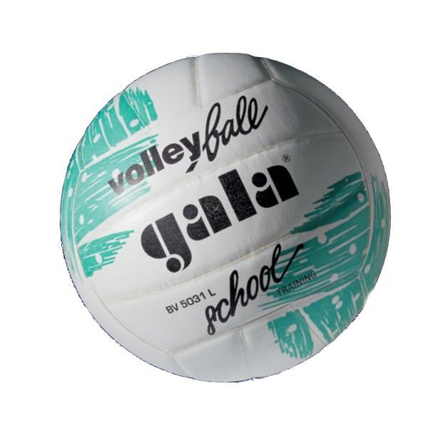 Volejbalový míč GALA School BV5031L