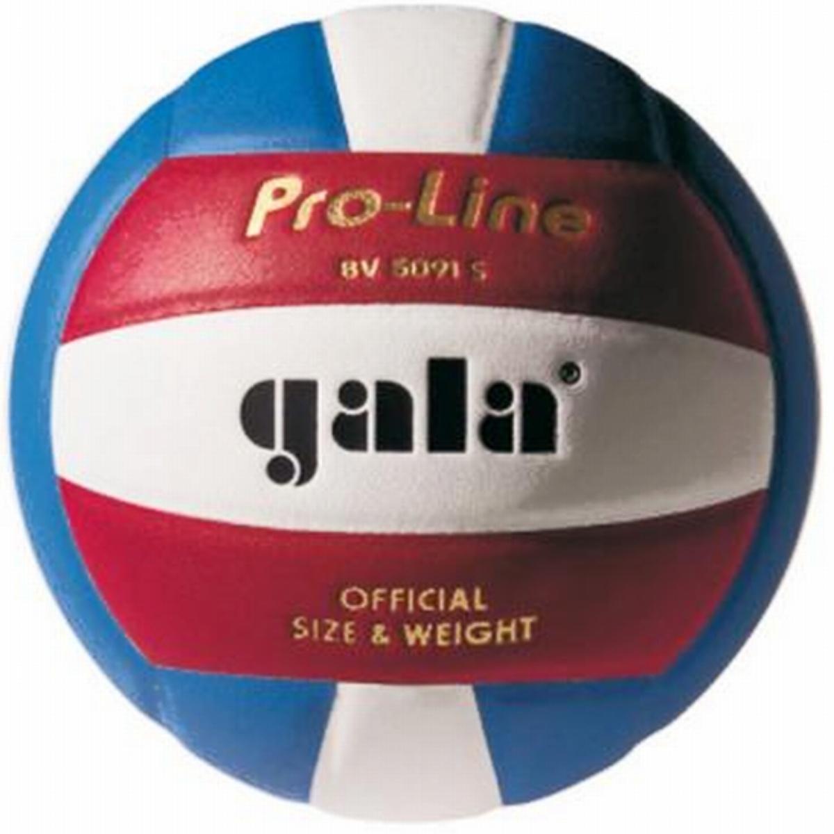 Volejbalový míč GALA Official Pro-Line BV5091S
