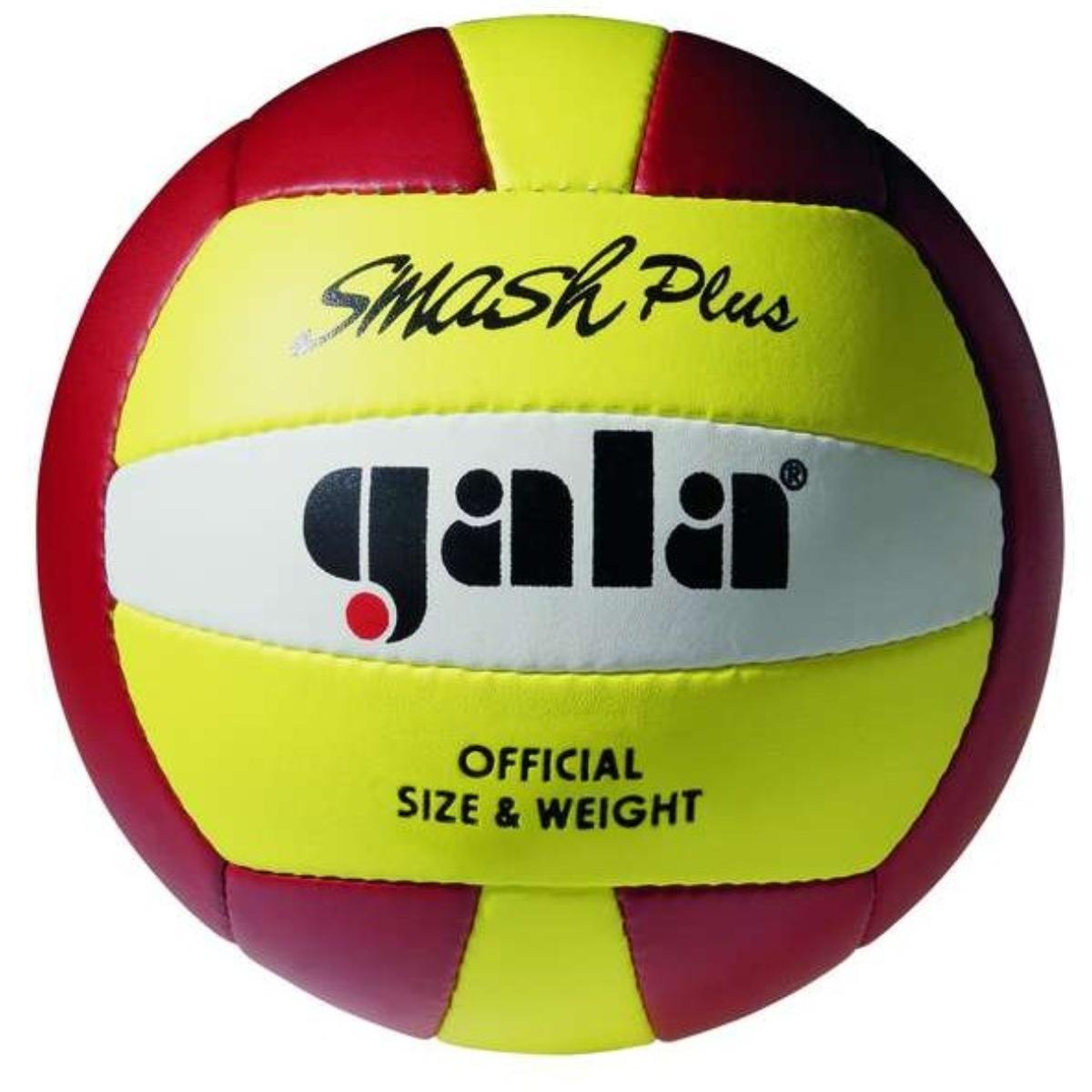 Volejbalový míč GALA Beach Smash BP5013S