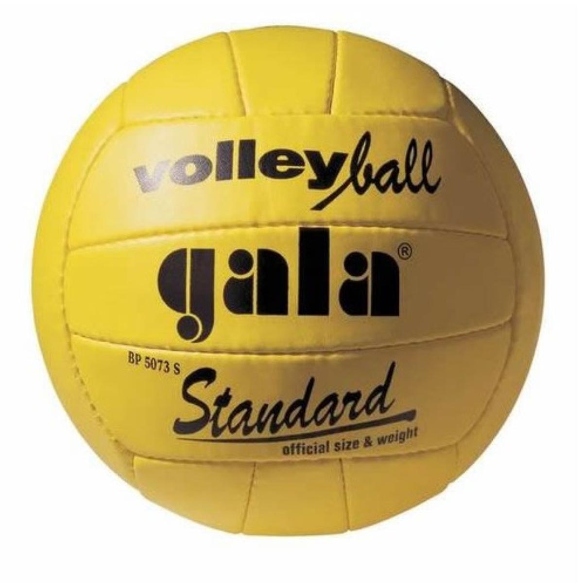 Volejbalový míč GALA Standard BP5073S