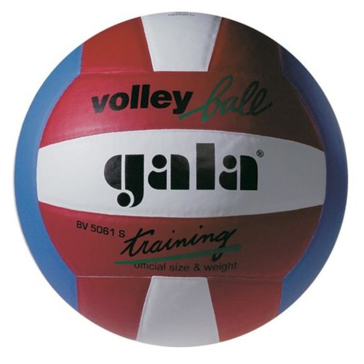 Volejbalový míč GALA Training Colour BV5061S