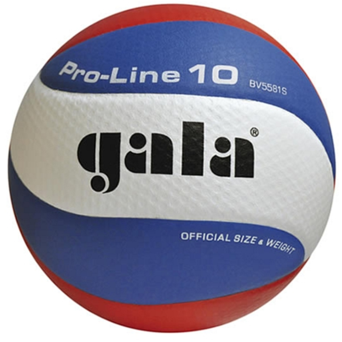 Volejbalový míč GALA Pro Line BV 5581S