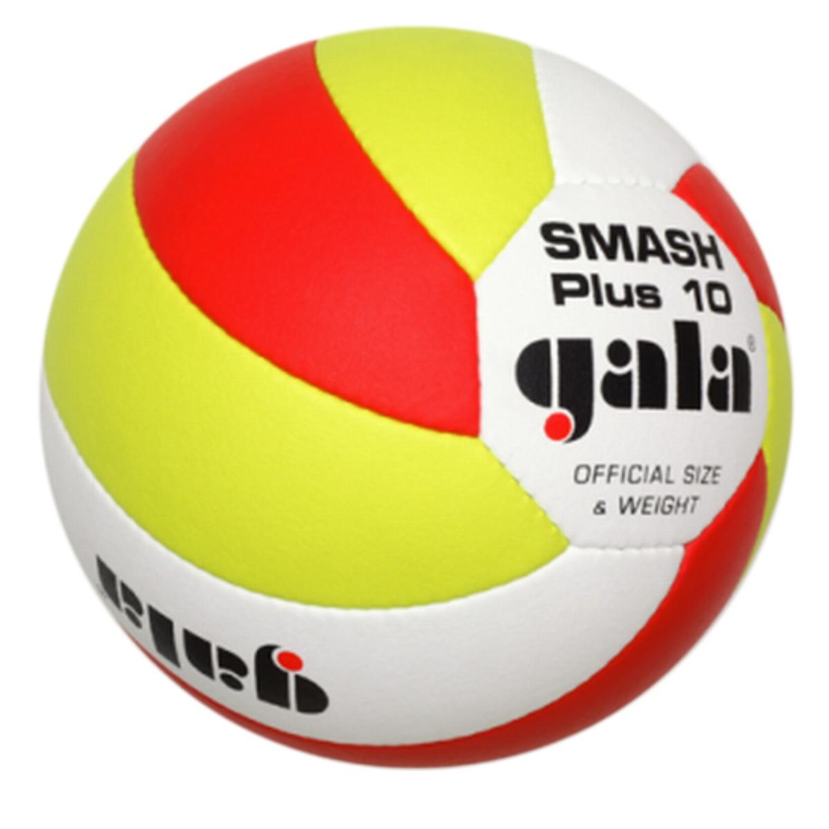Volejbalový míč GALA Smash Plus 10 5163S