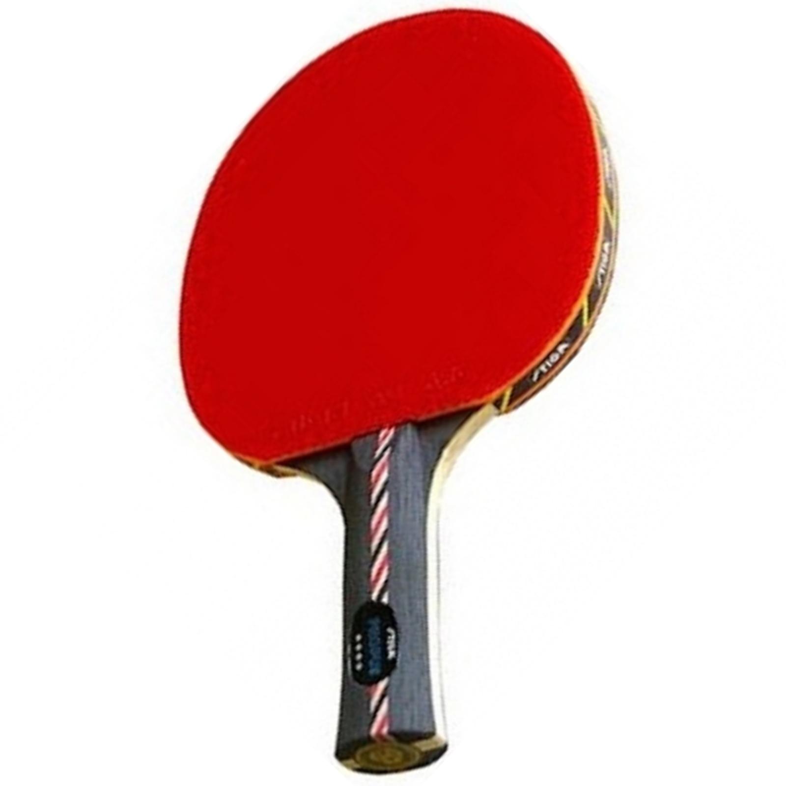 Pálka na stolní tenis STIGA Procyon