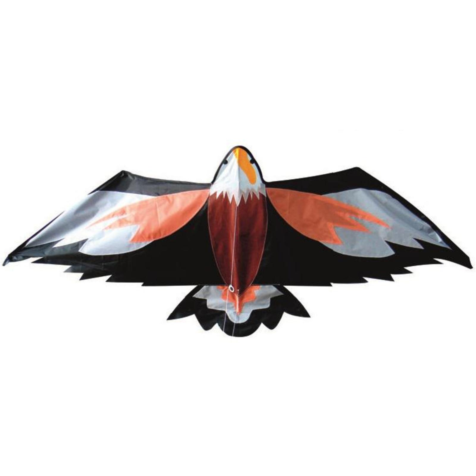 Létající drak - orel