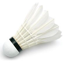 c39a23bbe Ako vybrať badmintonové loptičky   NAJLACNEJSISPORT.SK